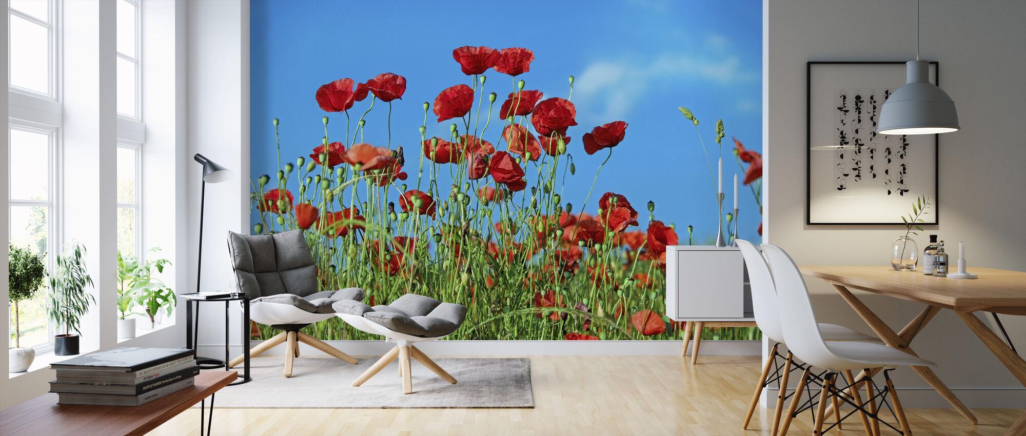 Field of Poppies - Wallpaper - Living Room