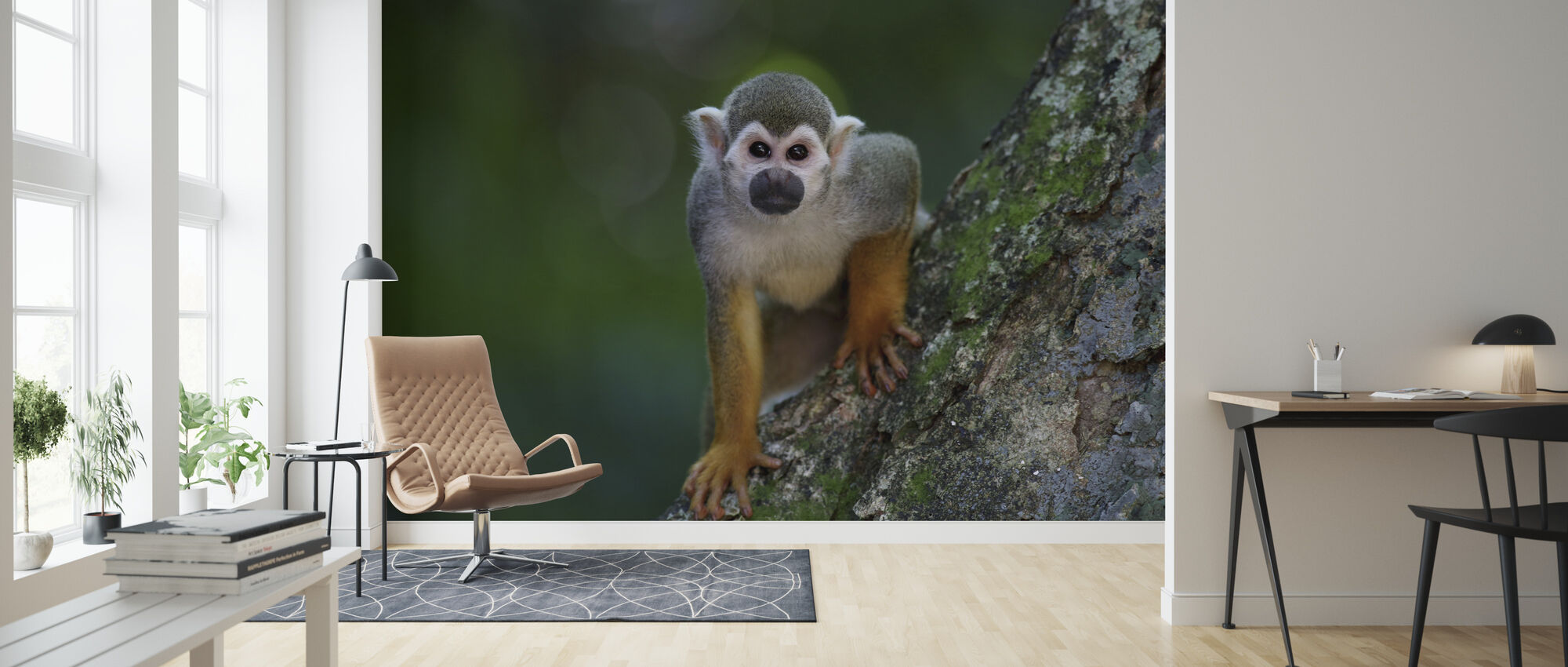 Scented Monkey - Wallpaper - Living Room