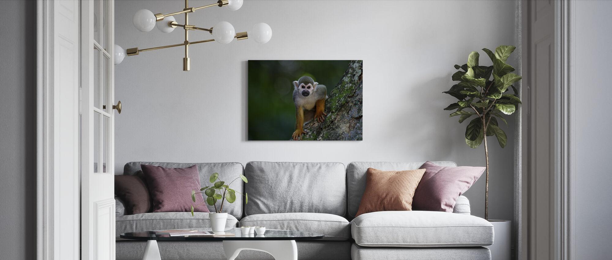 Tuoksuva apina - Canvastaulu - Olohuone