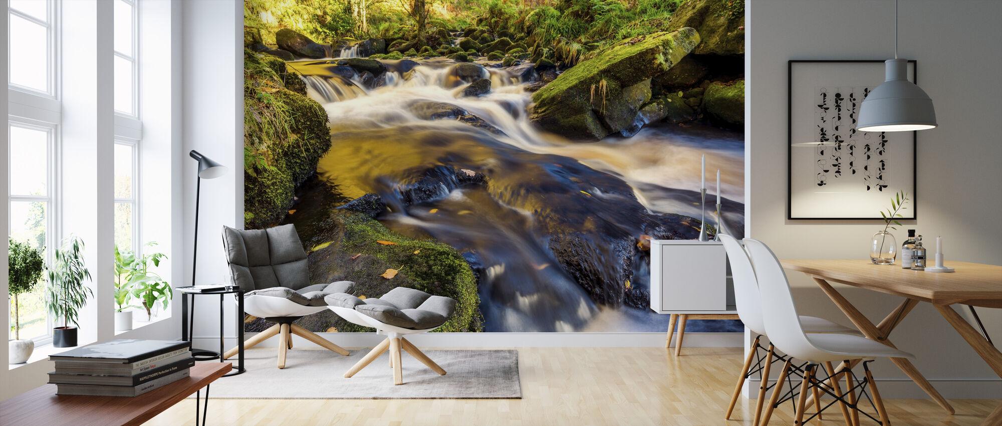 River Stream and Rocks - Wallpaper - Living Room
