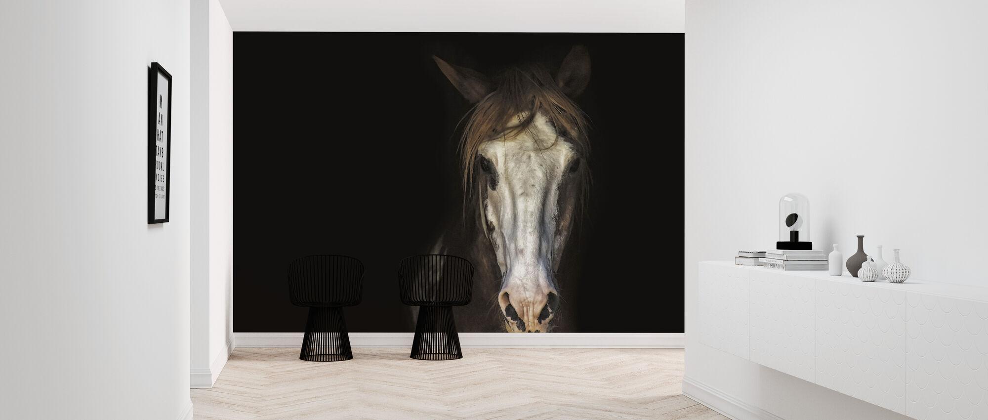 Horse in the Dark - Wallpaper - Hallway