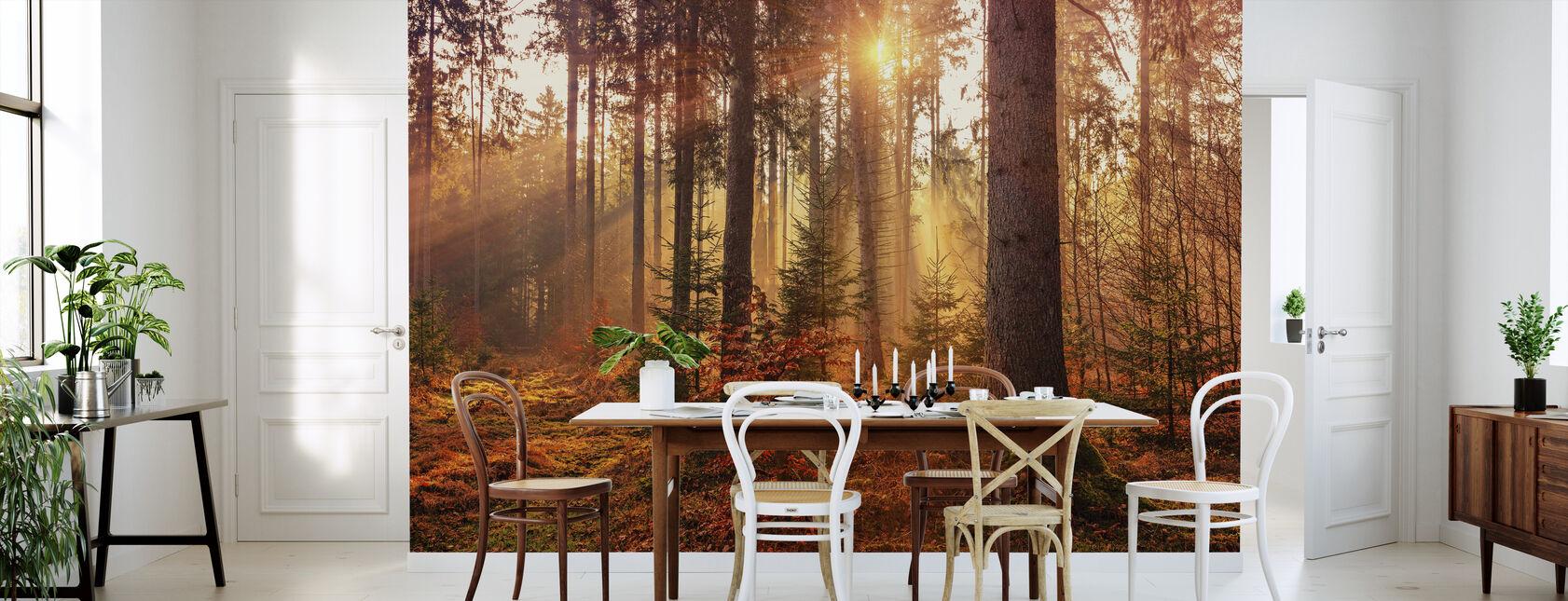 Efteråret - Tapet - Køkken