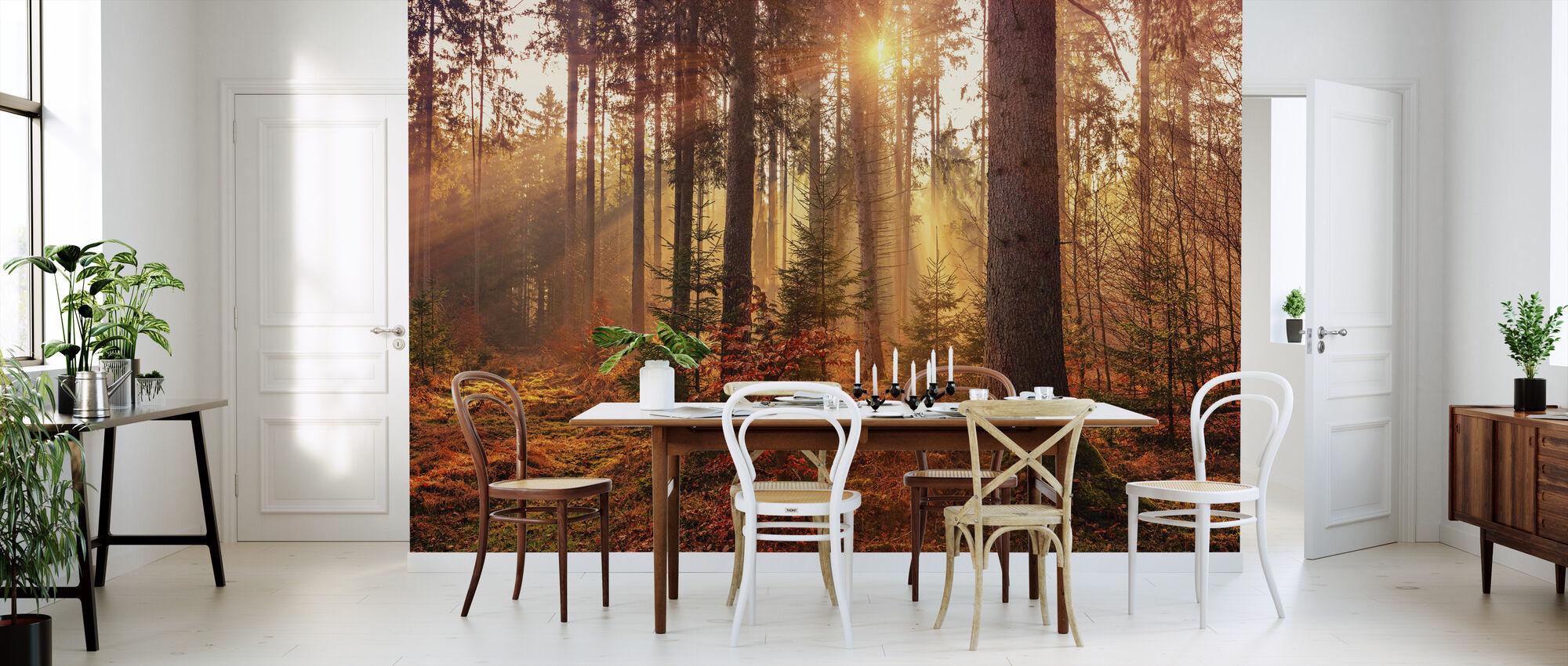 Herbst - Tapete - Küchen
