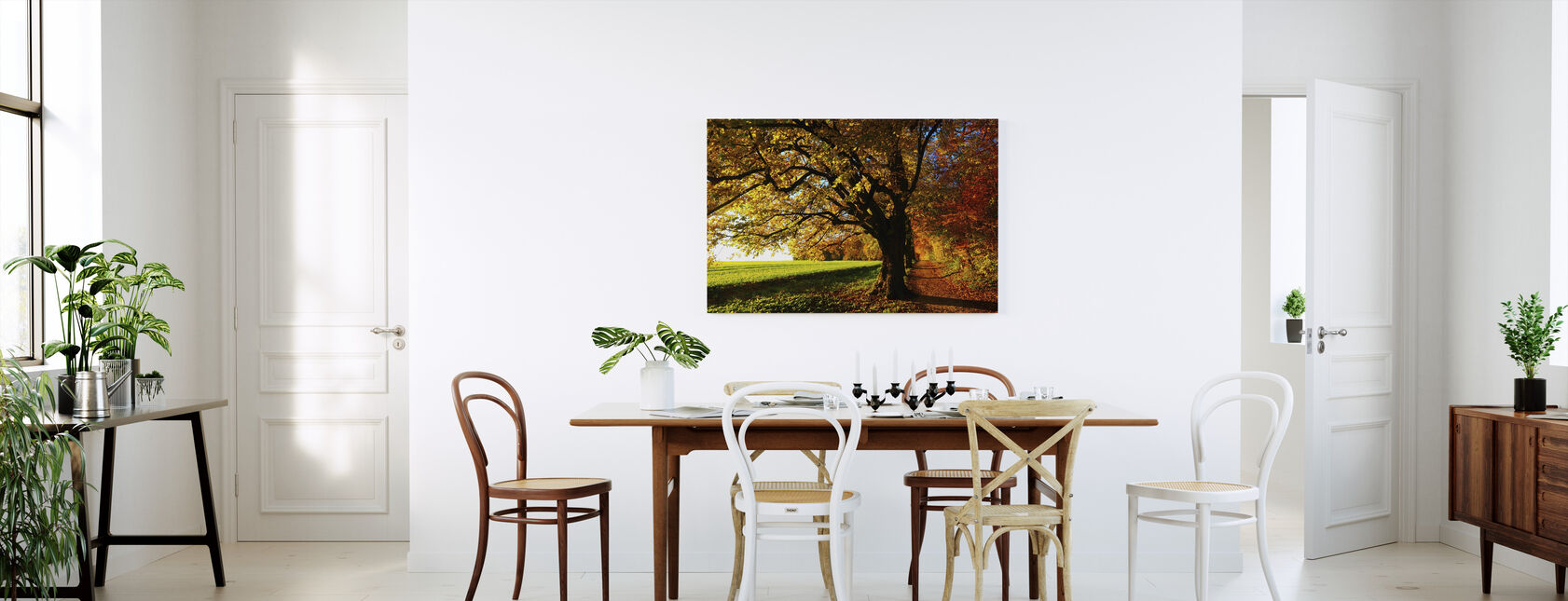 Forest Trail and Field - Canvas print - Kitchen