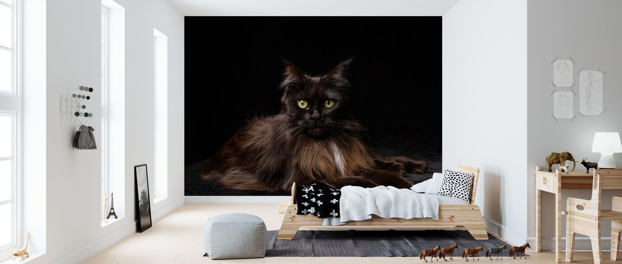 Maine Coon kat brun - Tapet - Børneværelse