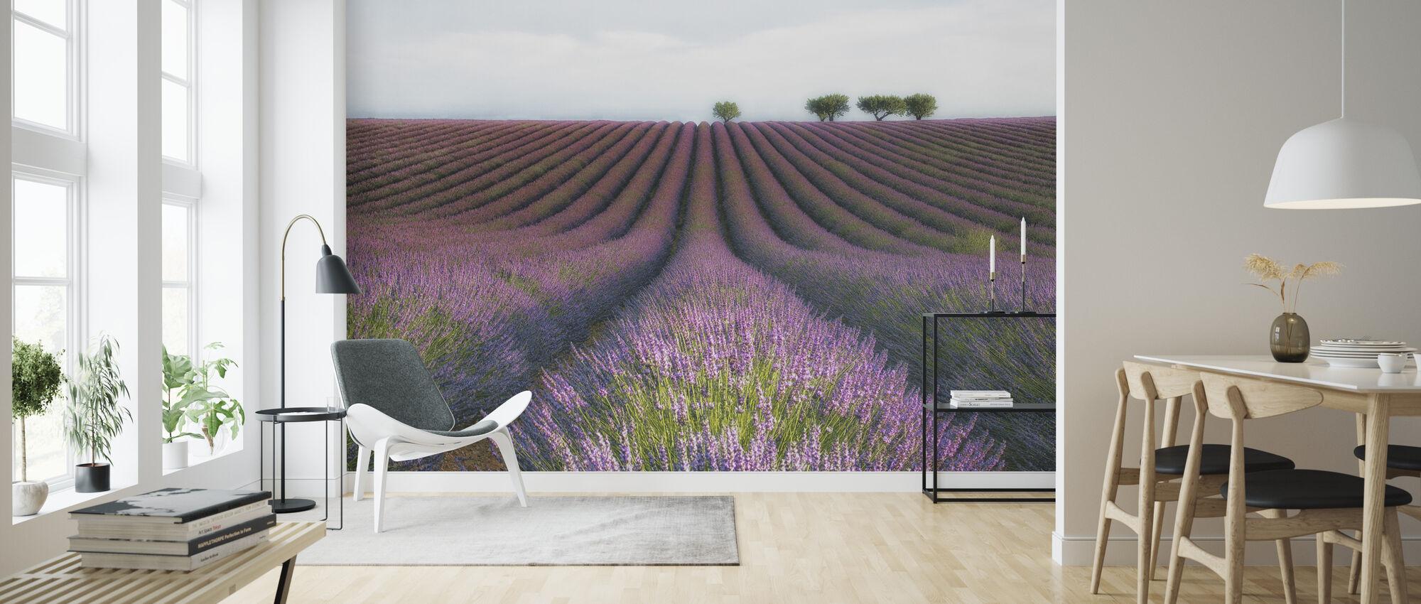 Lavender Velvet - Wallpaper - Living Room