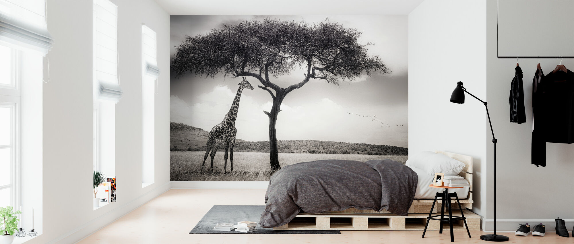 Under the African Sun - Wallpaper - Bedroom