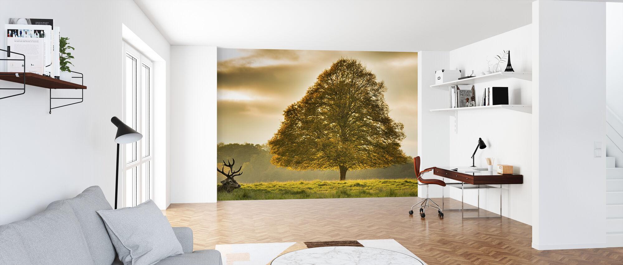 Hirsch und der Baum - Tapete - Büro