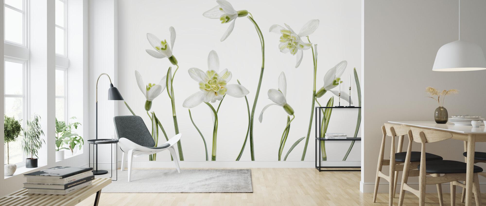 Spring Snowdrops - Wallpaper - Living Room