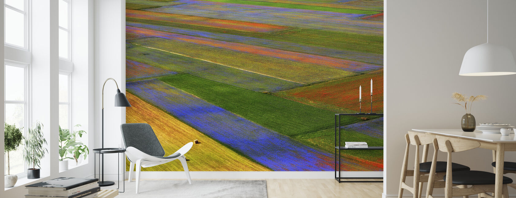 Colorful Field - Wallpaper - Living Room