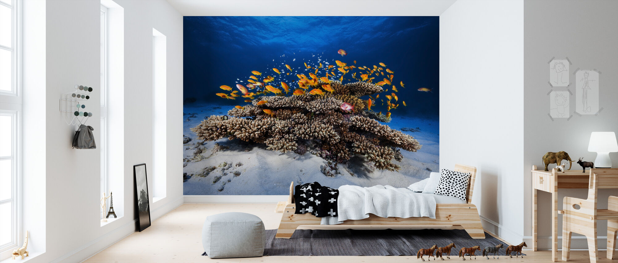 Marine Life - Wallpaper - Kids Room