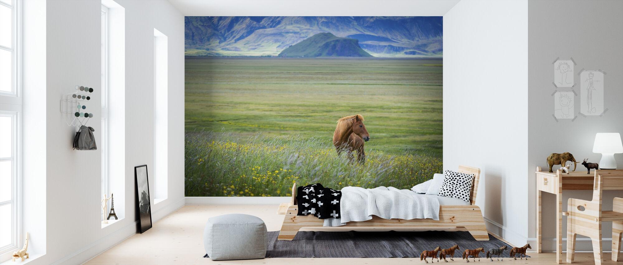 Iceland in a Nutshell - Wallpaper - Kids Room