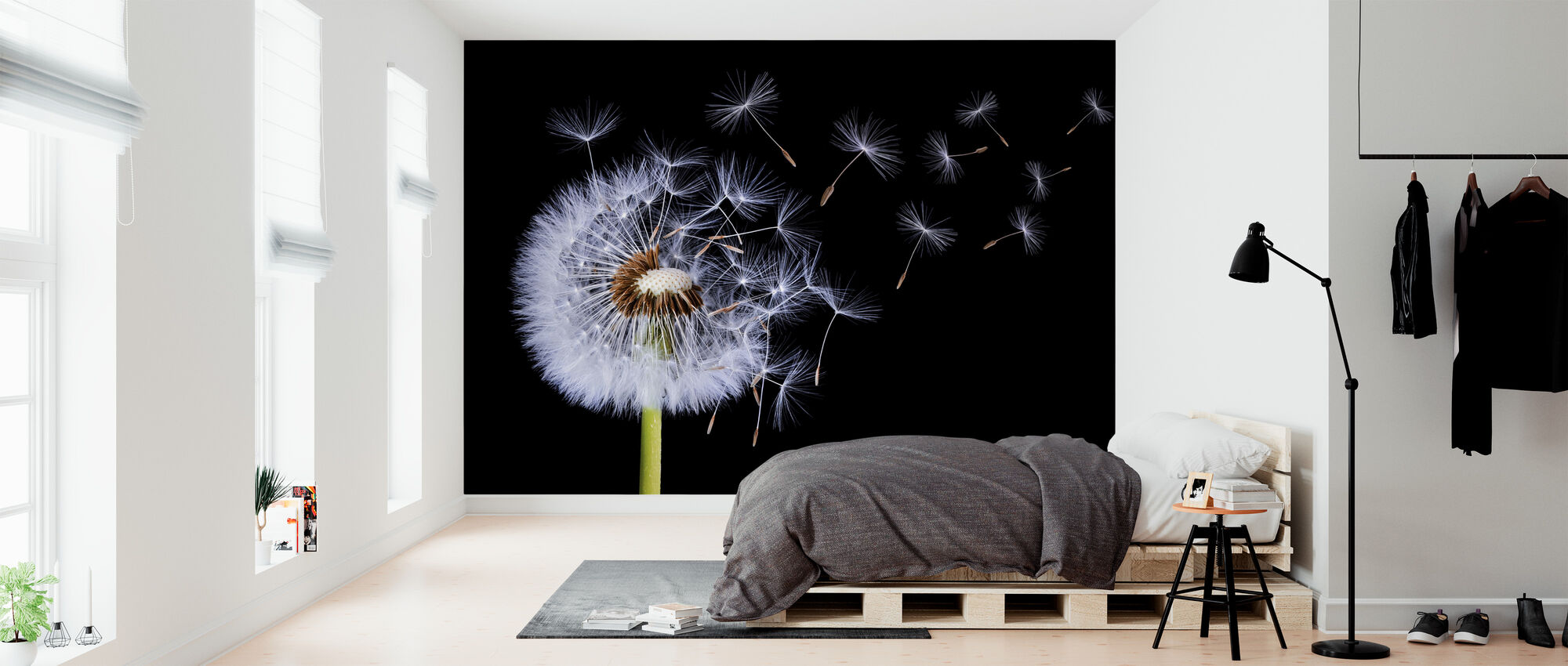 Dandelion Blowing - Wallpaper - Bedroom