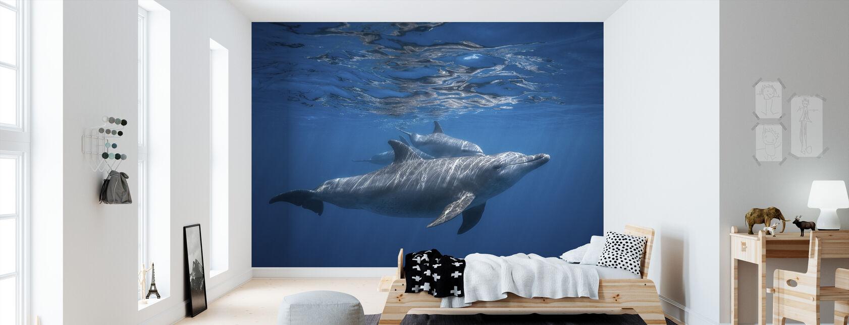 Pod of Dolphin - Wallpaper - Kids Room