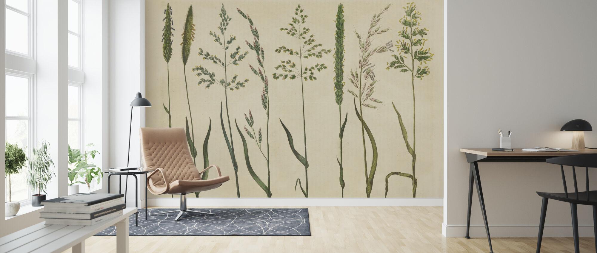 Herbal Botanical VII - Wallpaper - Living Room