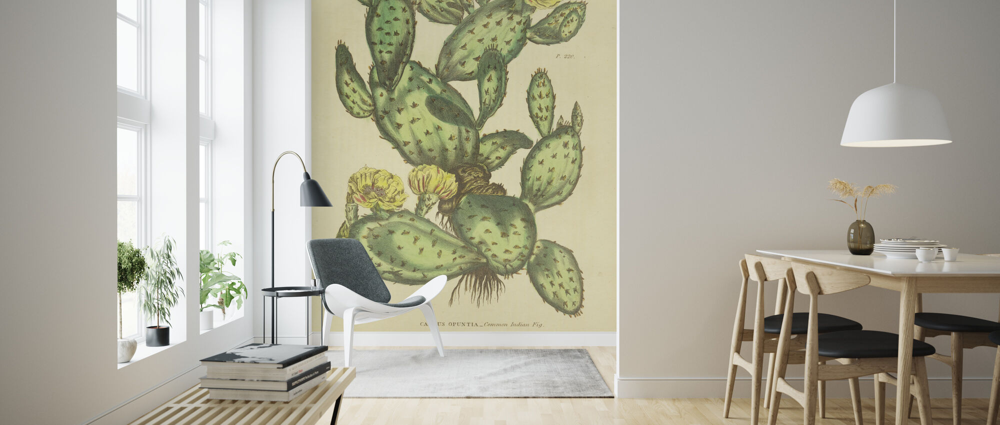 Herbal Botanical XXIX - Wallpaper - Living Room