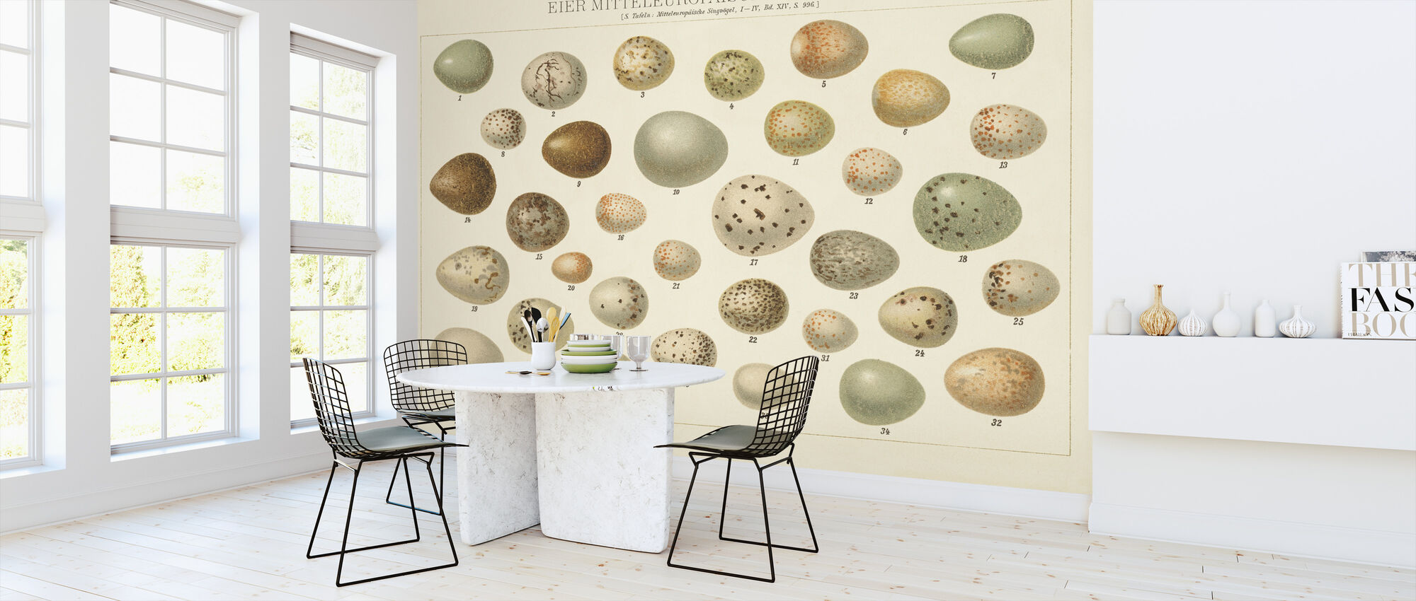 Song Bird Egg Chart v2 - Wallpaper - Kitchen