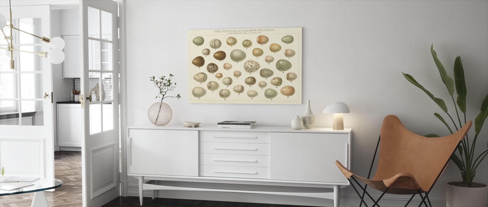 Song Bird Egg Chart v2 - Canvas print - Living Room