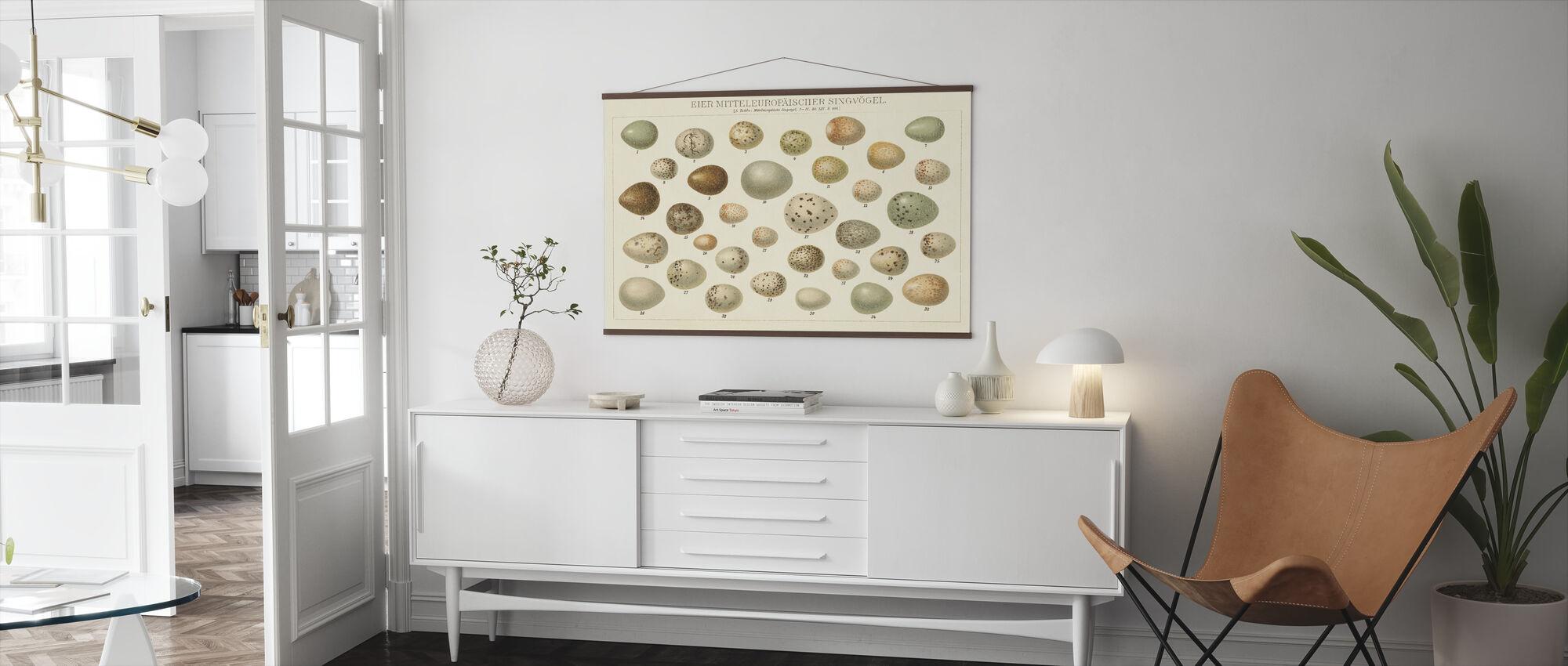 Song Bird Egg Chart v2 - Poster - Living Room