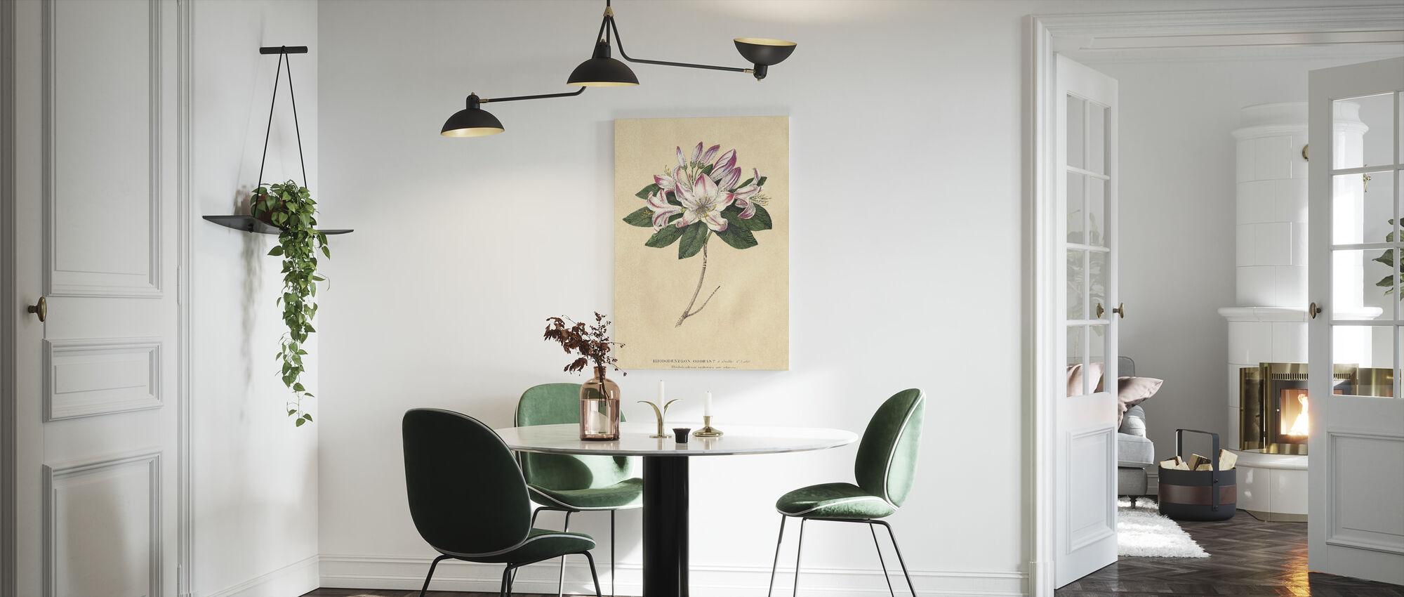 Rhododendron Vintage - Canvas print - Kitchen