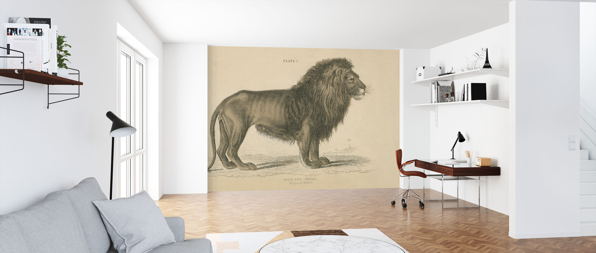 Vintage Lion - Wallpaper - Office