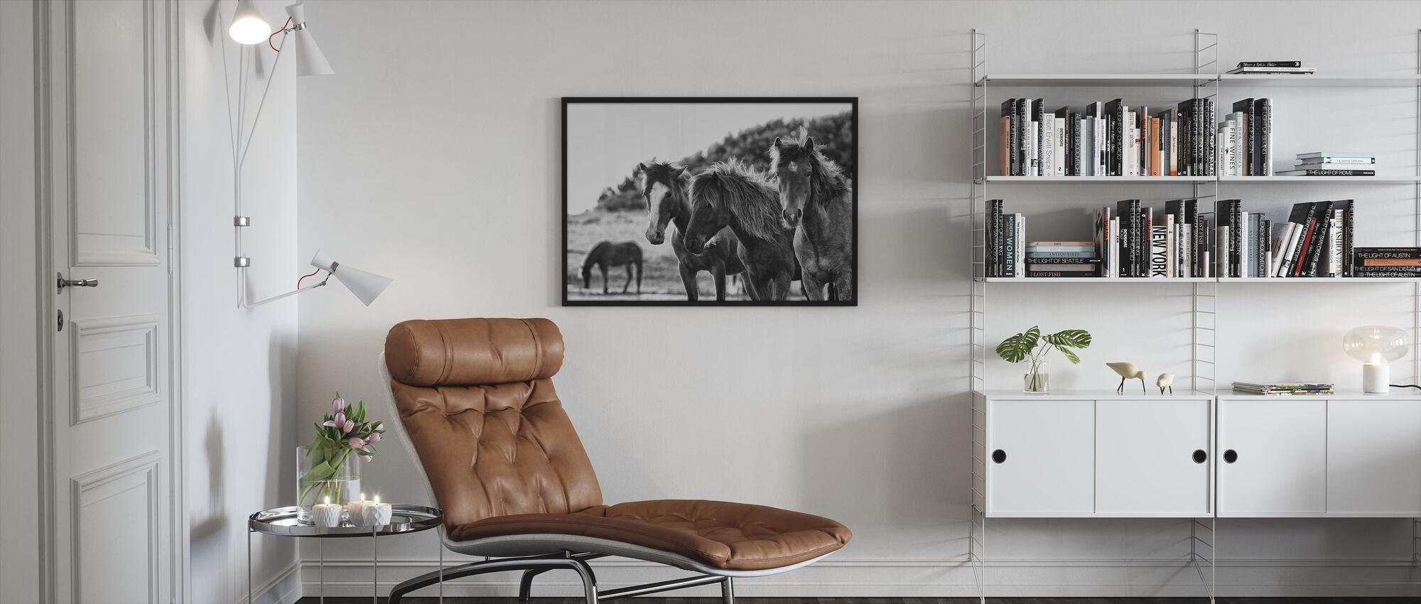 Hester Tre - Innrammet bilde - Stue