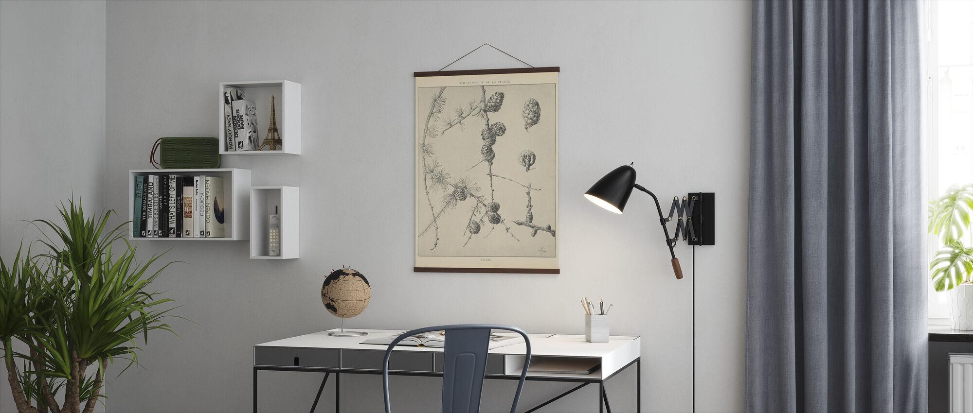 Vintage Tree Skisser II - Poster - Kontor