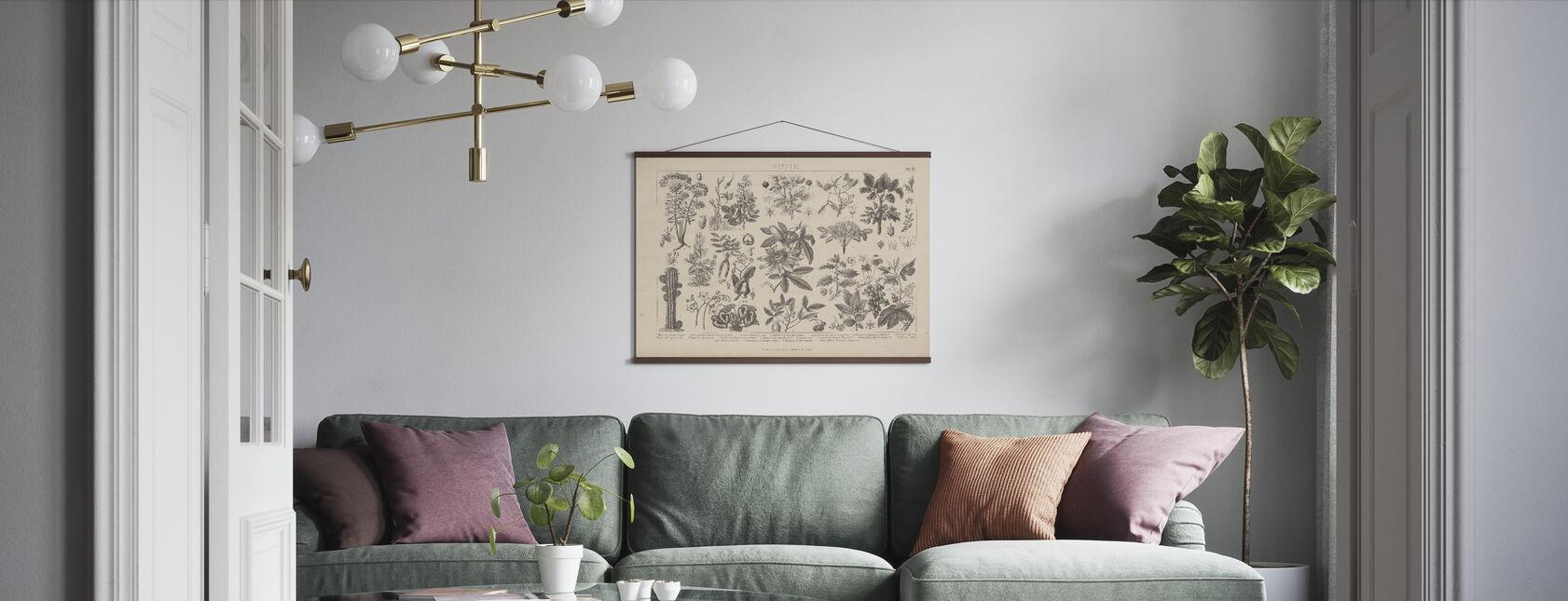 Botanik im Vintage - Poster - Wohnzimmer