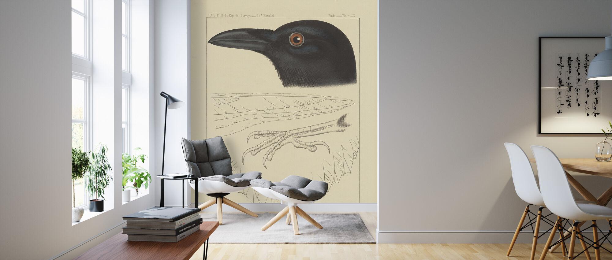 Bird Prints II - Wallpaper - Living Room