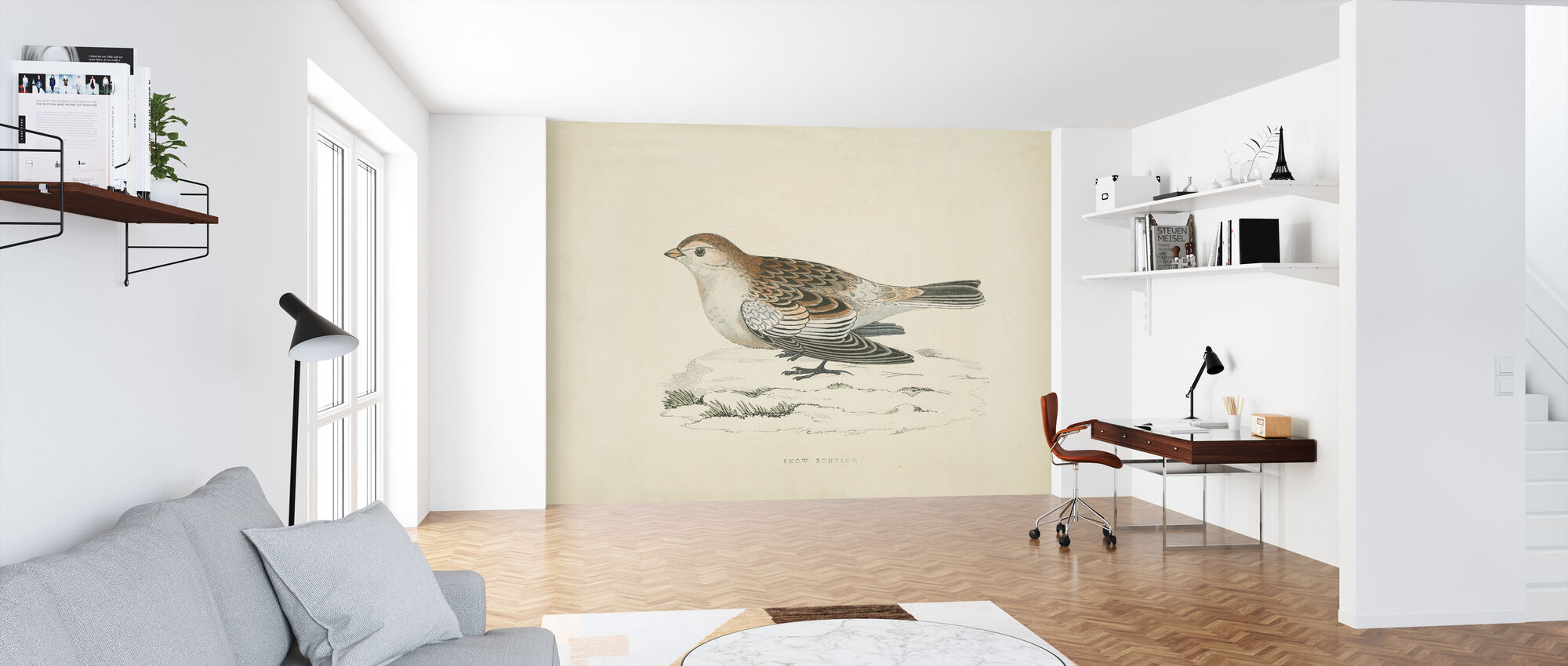 Snow Bunting Print - Wallpaper - Office