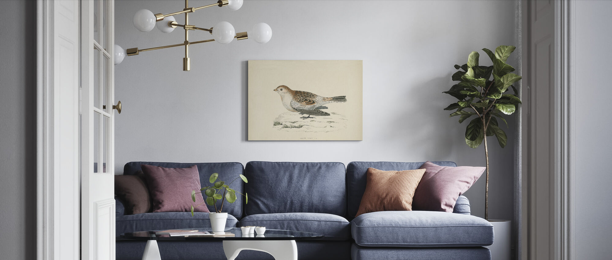 Snow Bunting Print - Canvas print - Living Room