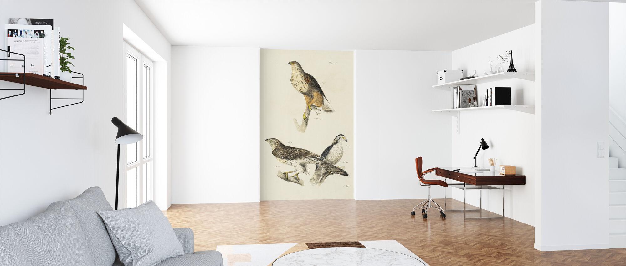 Birds of Prey II - Wallpaper - Office