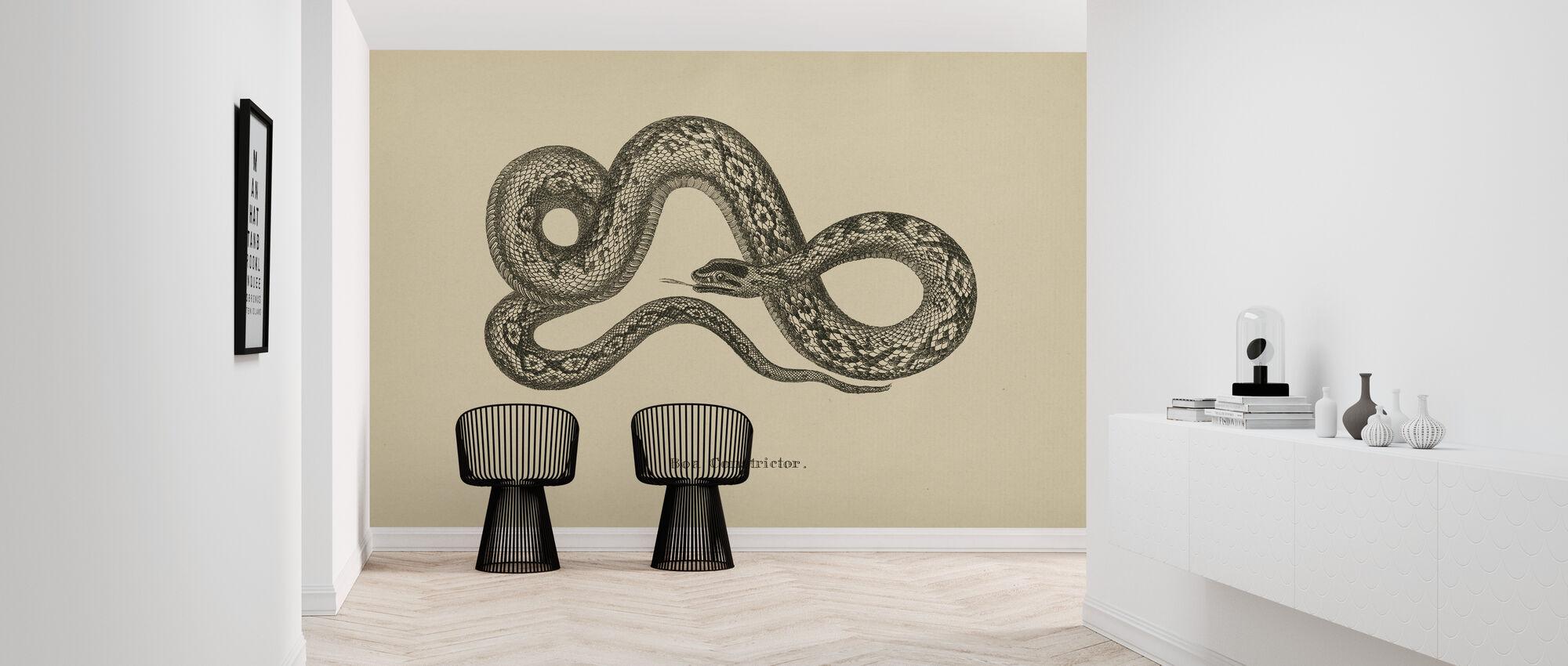 Vintage Boa Constrictor - Wallpaper - Hallway