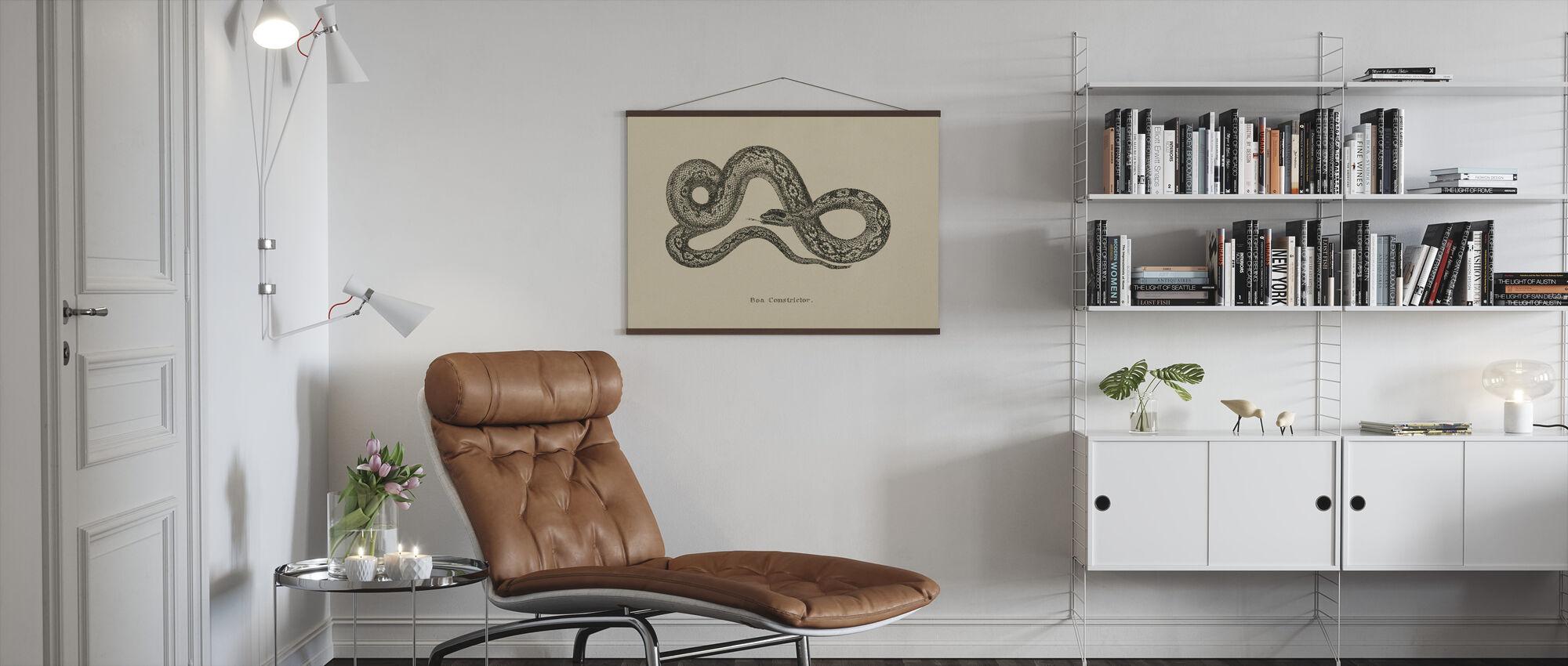 Vintage Boa Constrictor - Poster - Vardagsrum