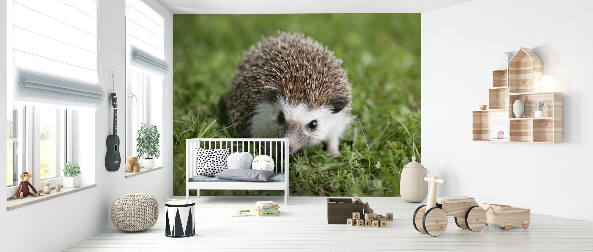 Hedgehog on Lawn - Wallpaper - Nursery