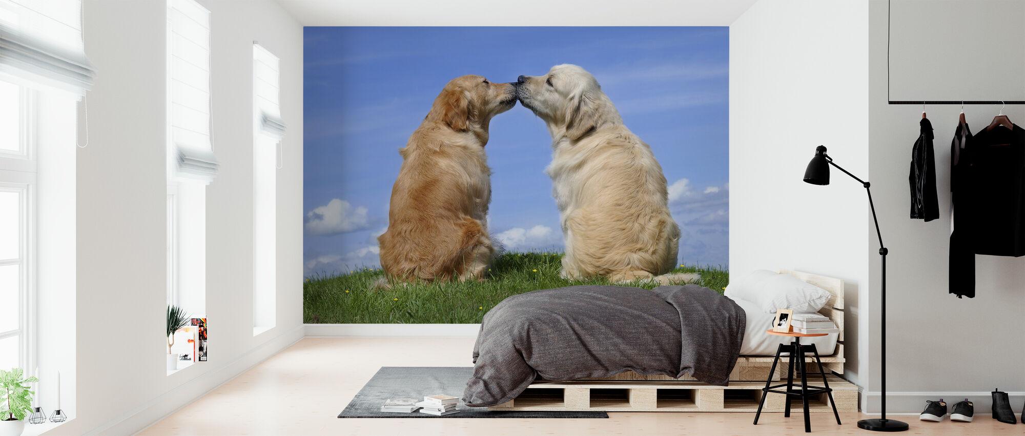 Hunde kysse - Tapet - Soveværelse