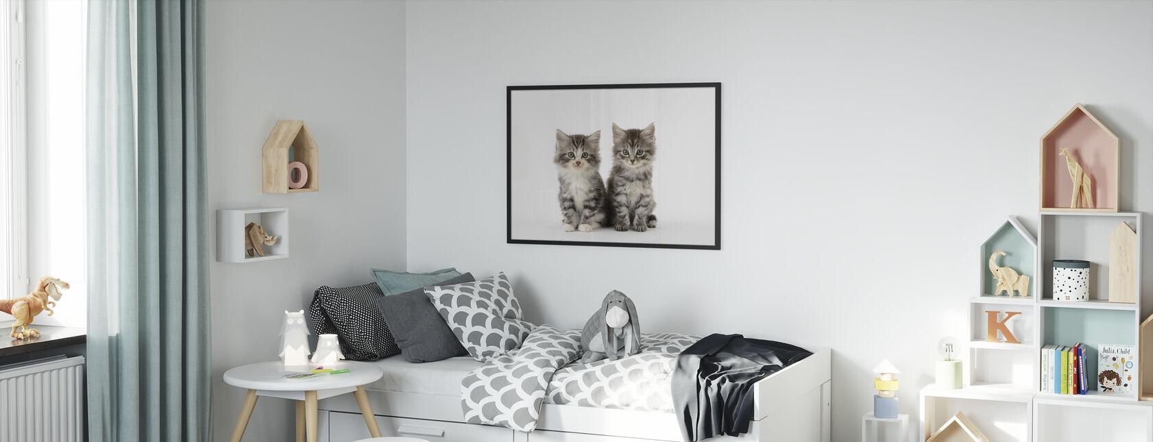 Katter hvit bakgrunn - Innrammet bilde - Barnerom
