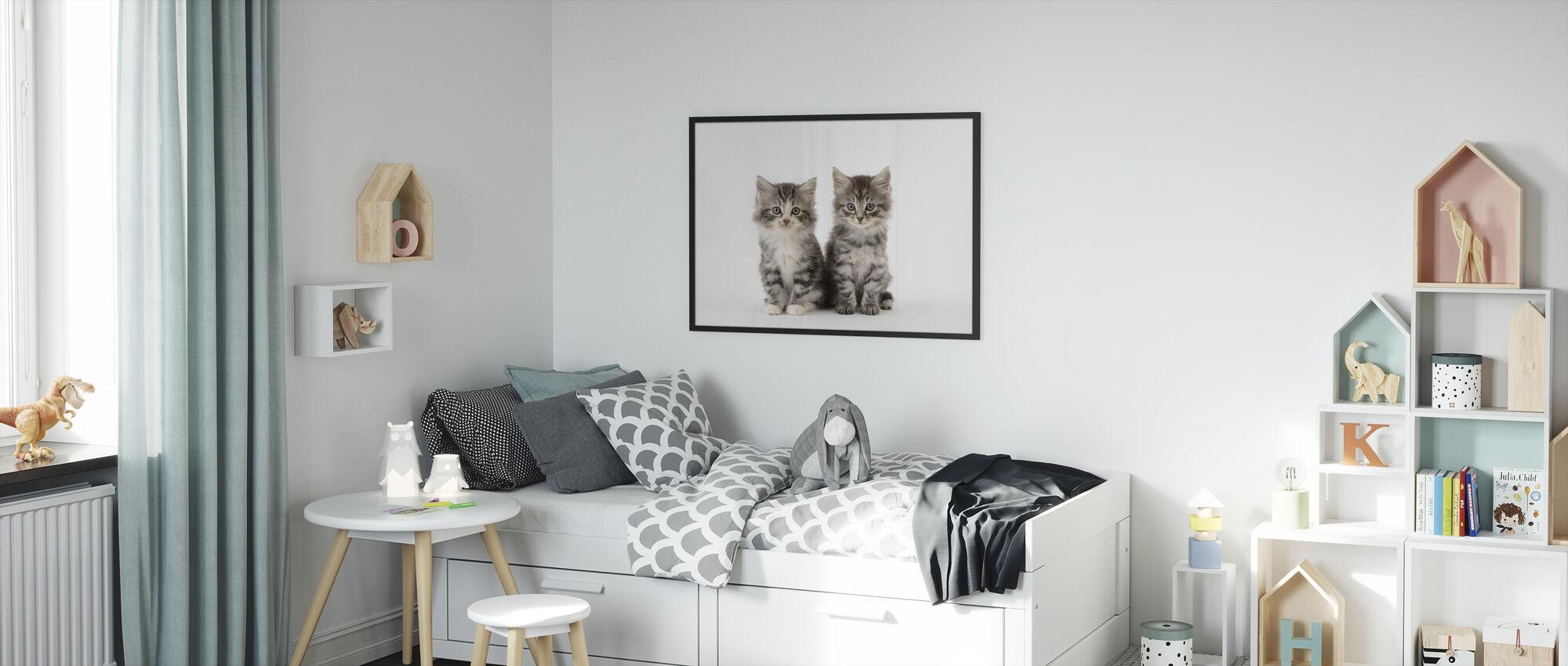 Cats White Background - Framed print - Kids Room