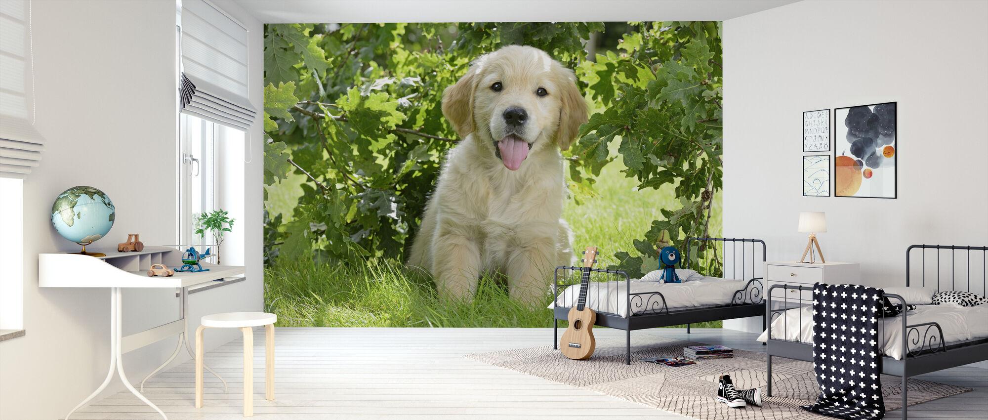 Golden Retriever Puppy - Wallpaper - Kids Room