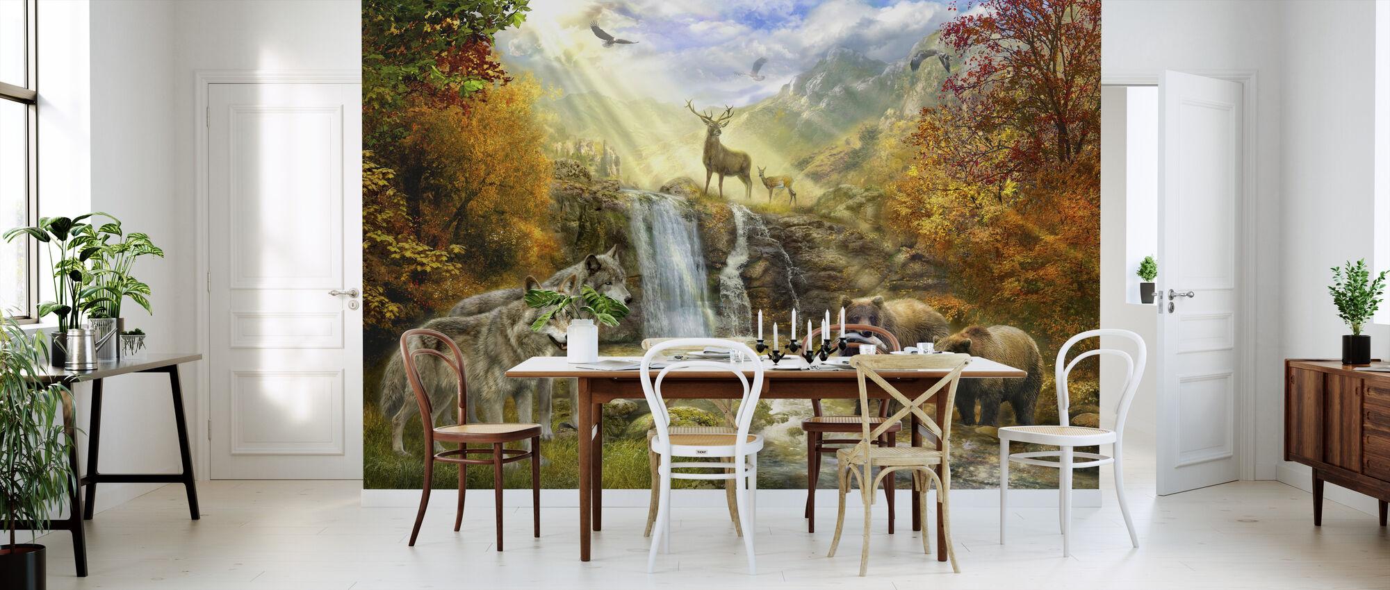 Bears Falls - Wallpaper - Kitchen