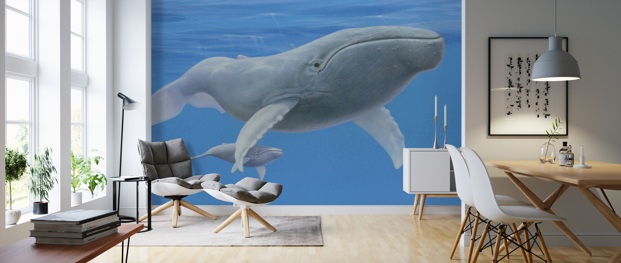 Whale Baby - Wallpaper - Living Room