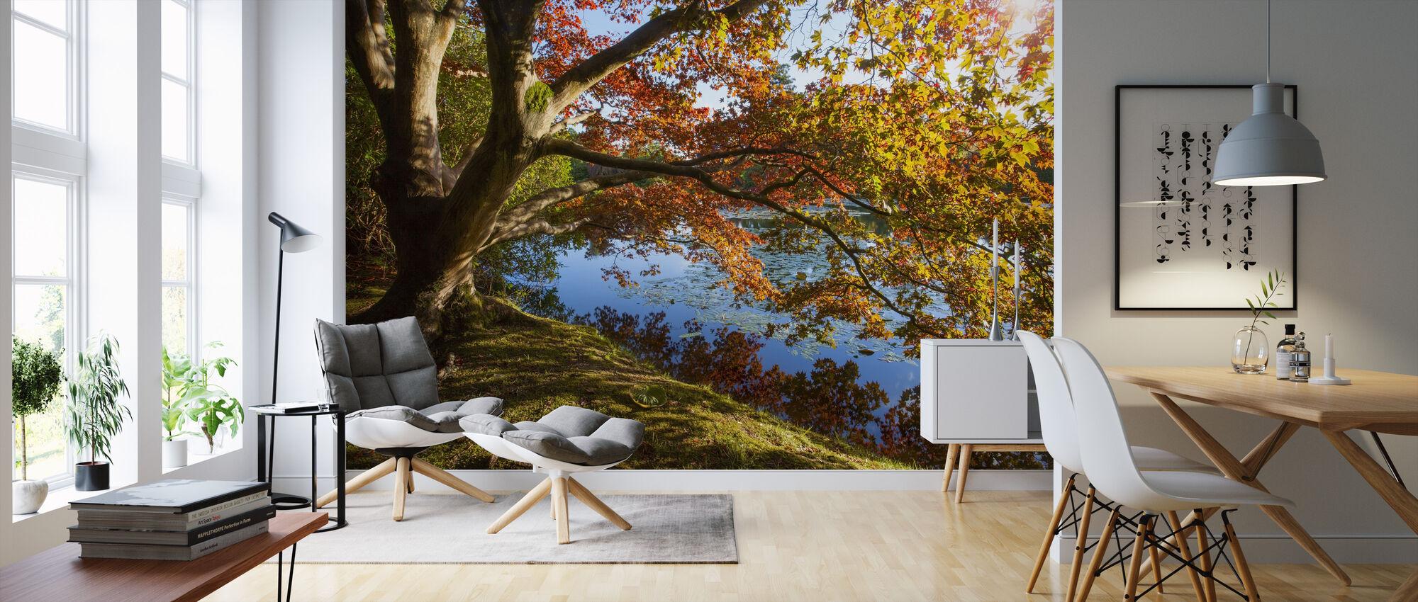 Efterår Træ Refleksion - Tapet - Stue