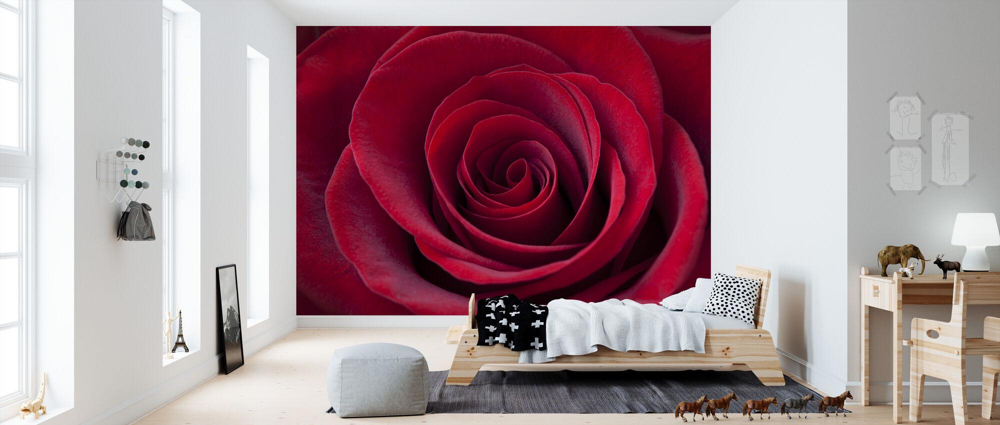 Deep Red Rose - Wallpaper - Kids Room