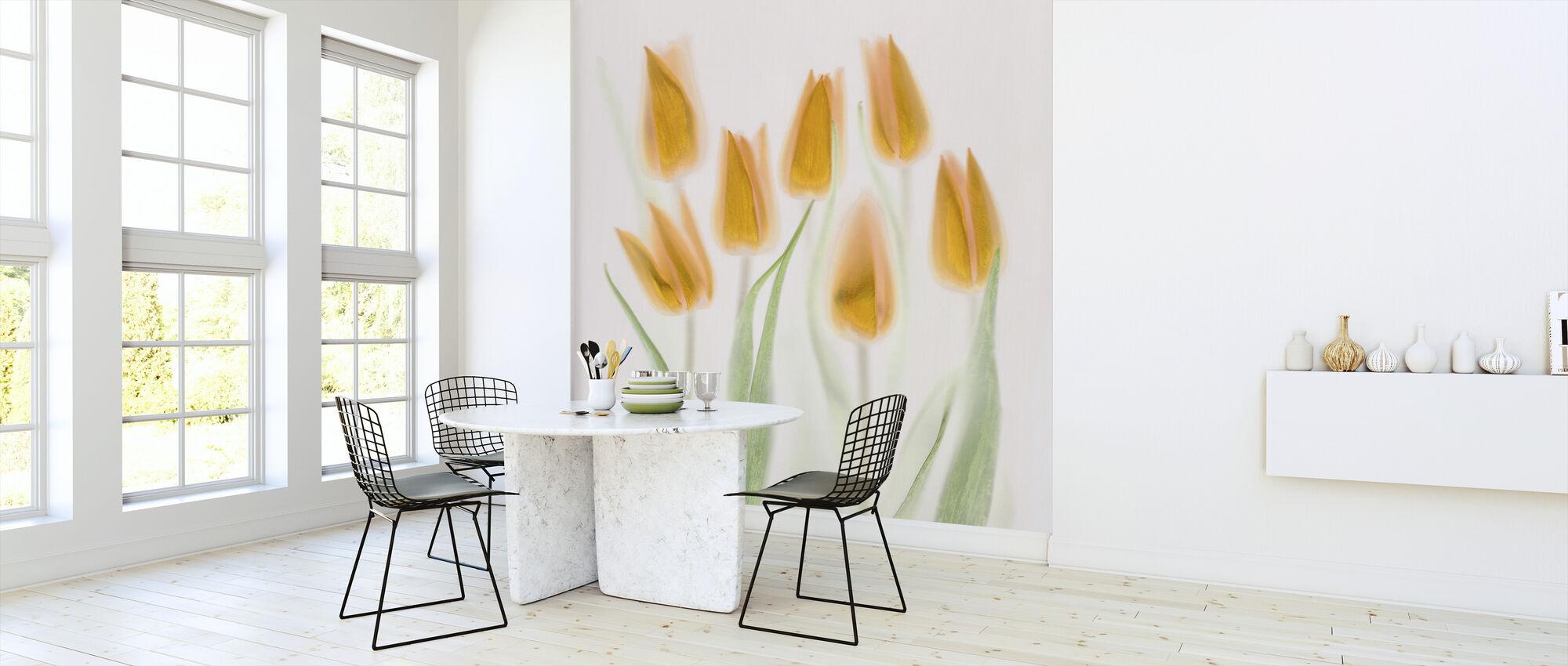 Golden Tulips - Wallpaper - Kitchen