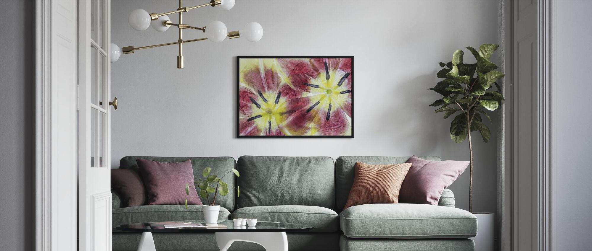 Tulppaanit - Kehystetty kuva - Olohuone