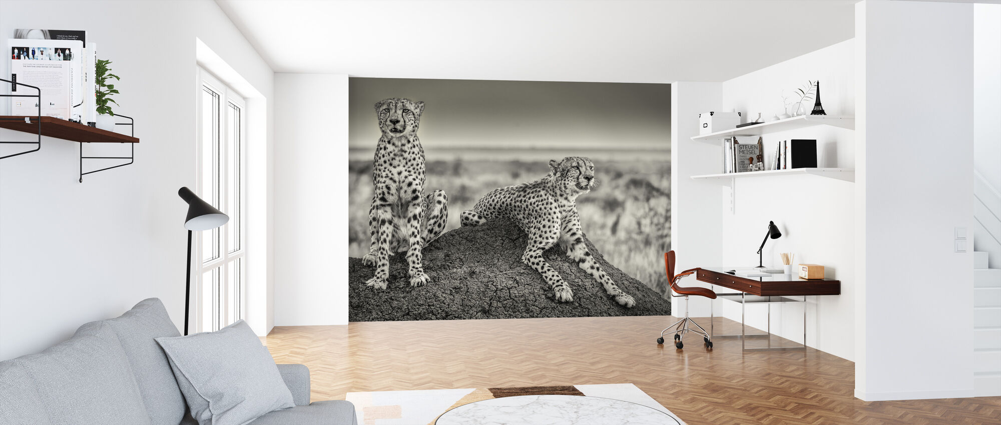 Two Cheetahs Watching Out - Wallpaper - Office