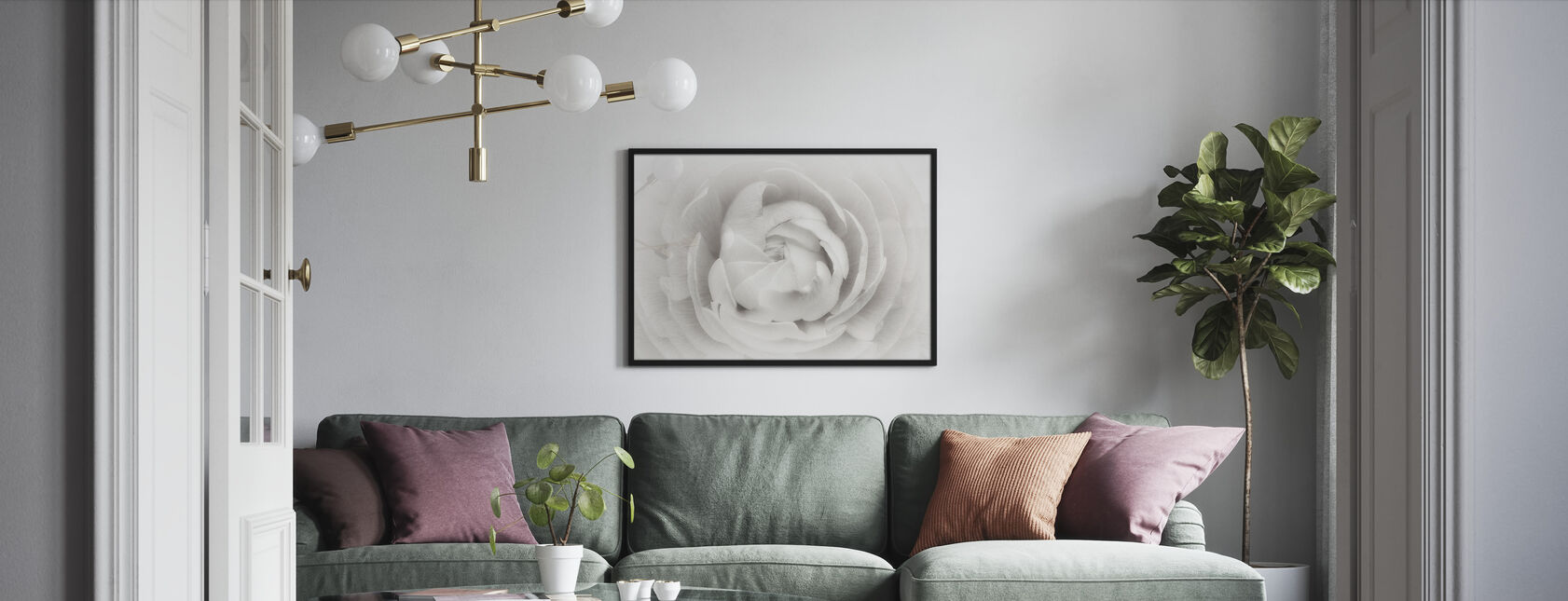 Ranunculus - Framed print - Living Room