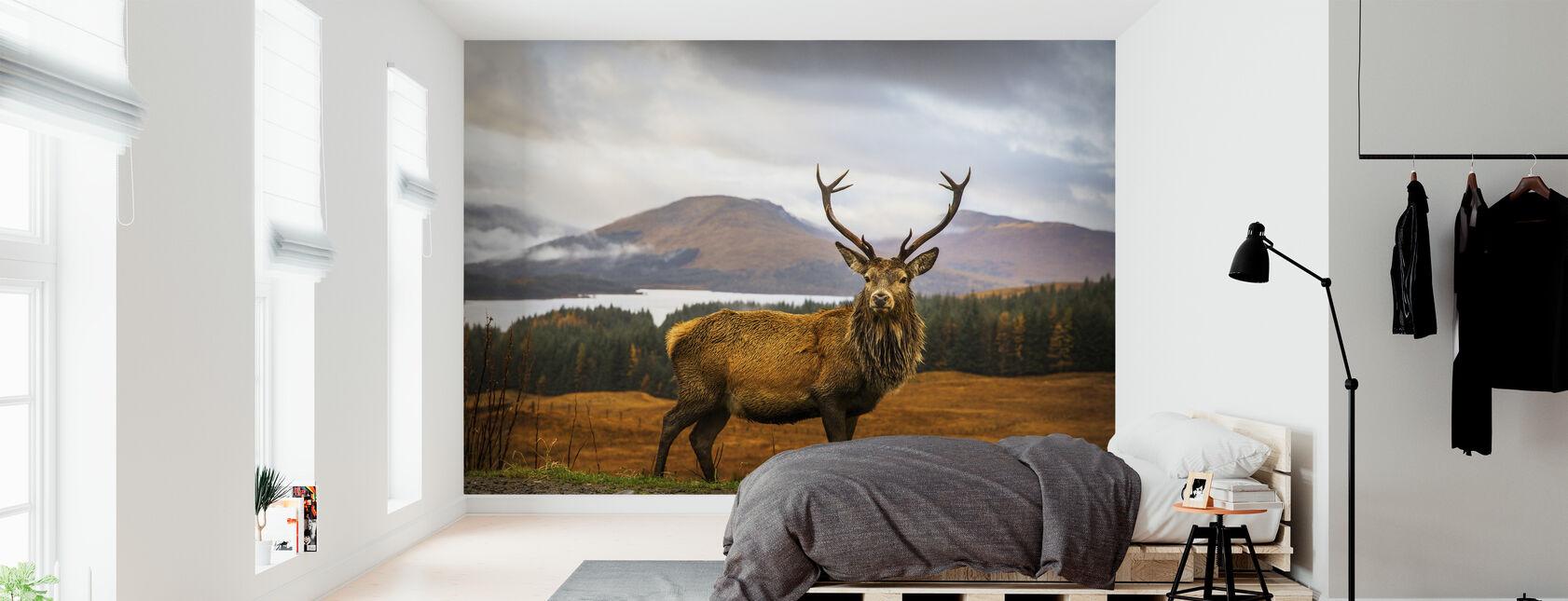 Scottish Stag - Wallpaper - Bedroom