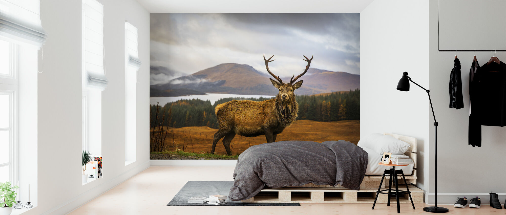 Scottish Stag - Wallpaper - Bedroom