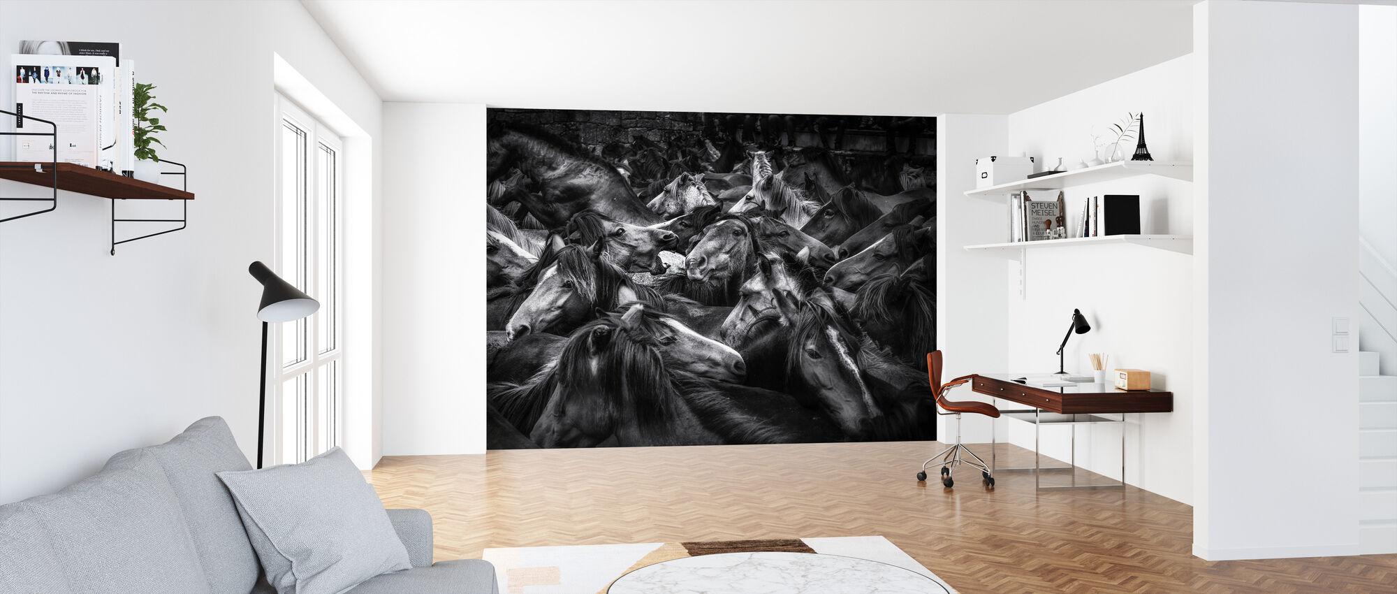 Cornered - Wallpaper - Office